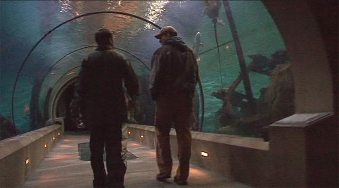 "<p>The Oregon Coast Aquarium will honor veterans and active duty military personnel with free admission on Veterans Day. Admission is normally $22.95.</p><p>""We hope that this offer demonstrates our gratitude to those who serve and have served our county, as well as the families who support them,"" said Carrie Lewis, Aquarium President/CEO.</p><p>Family members who accompany them to the Aquarium are eligible for a 10 percent discount. The aquarium said families of active duty military personnel are also eligible for the discount, even if the person serving is not present.</p><p>Visitors must show military or veteran organization identification, discharge papers or other official military identification; families of deployed military personnel must show active duty identification.</p>"