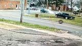 Video: Violent crash spins truck around, two run from vehicle