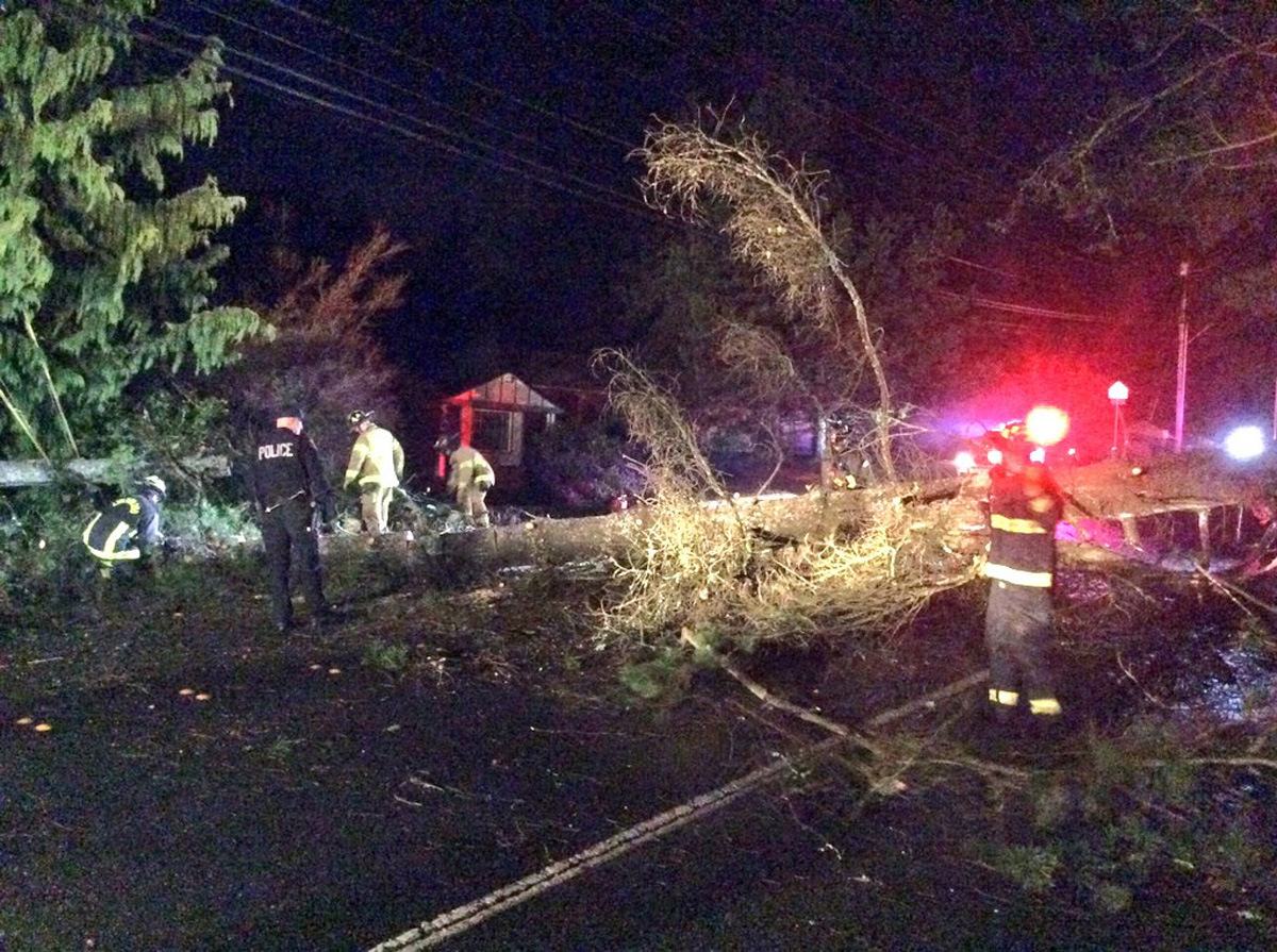 Heavy winds knocked down trees and fully blocked 168th & 52nd. Photo from Lynnwood Fire