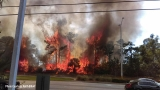 Brush fire forces evacuations in Port St. Lucie