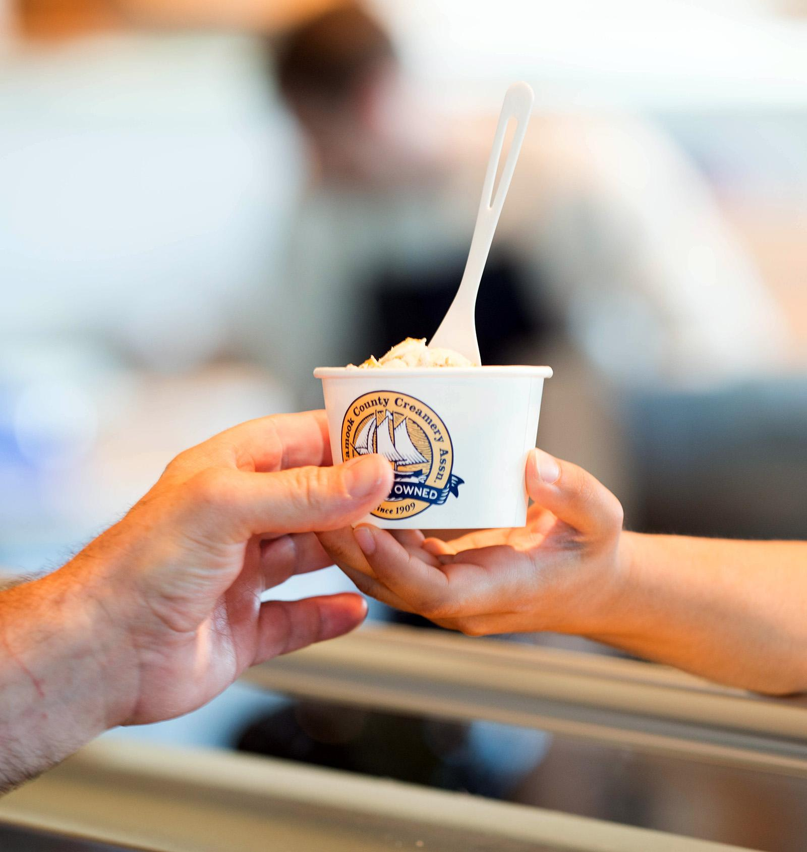 After nearly two years of renovations, Tillamook Creamery is reopening its Visitor Center at the factory. The facility has some of the old favorites, like the ice cream counter, views of the factory floor, and squeaky cheese at the end of tours, along with some new amenities like a wood-fired pizza oven and café space. (KATU image by Tristan Fortsch on June 19, 2018)