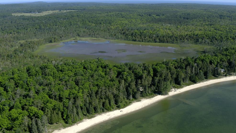 Door County Land Trust acquires 20 acres of rare coastal wetlands on Washington Island